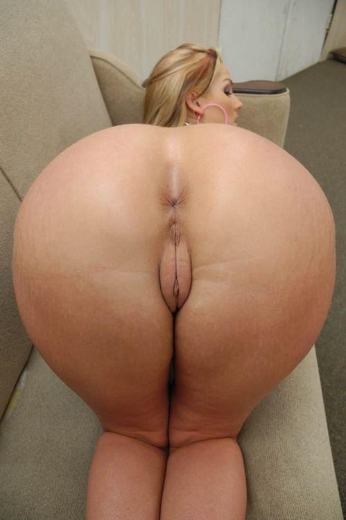Голые жопы женщин вид с зади фото 54-608